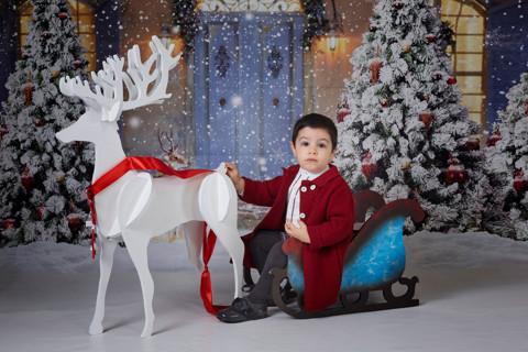La Navidad de Francisco